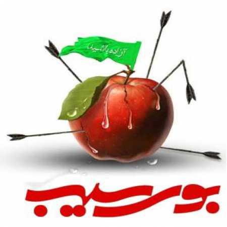 دانلود مداحی محمدحسین حدادیان به نام بوی سیب و حرم حبیب